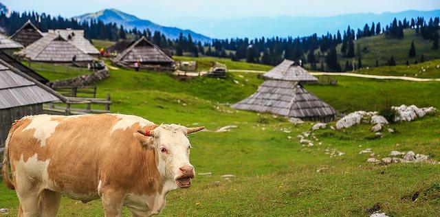 la randonnée en slovenie