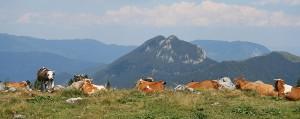 ballade slovénie