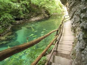 les gorges de Vintgar à côté du lac de bled en Slovénie