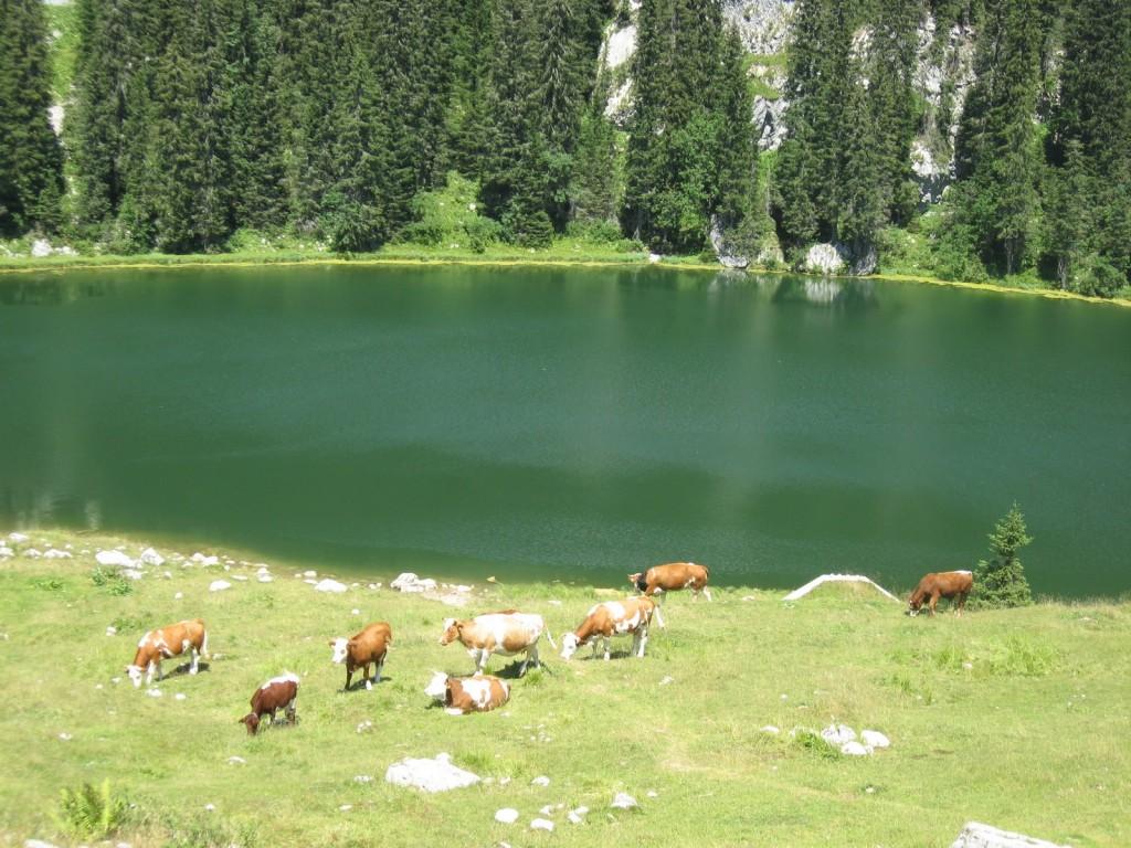 rando montagne slovénie