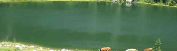 Une bonne balade du lac de Bohinj (mais longue...)