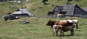 ballade slovenie