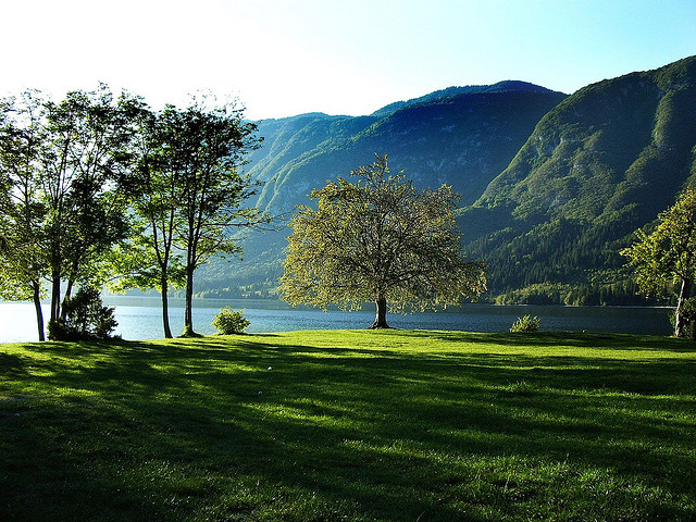 le plus beau lac de Slovénie