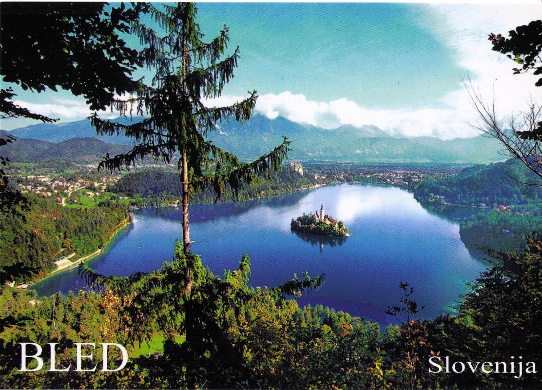 lac de Bled vue