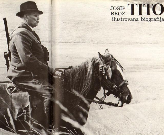 cheval tito