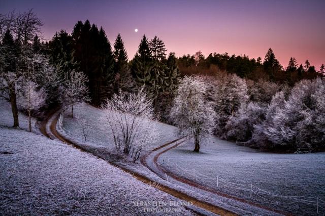 neige slovenie