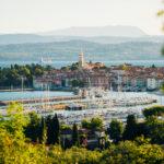 Des impressions de retour de Slovénie !