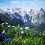 Mes dix plus belles photos en dix ans en Slovénie