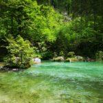 La source emeraude de la Kamniska bistrica et son canyon