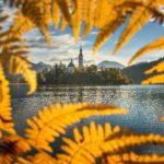 Visiter la Slovénie en automne 2021 : les incontournables